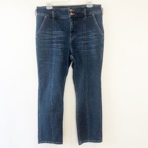 ANTHROPOLOGIE PILCRO AND THE LETTER PRESS JEANS 31
